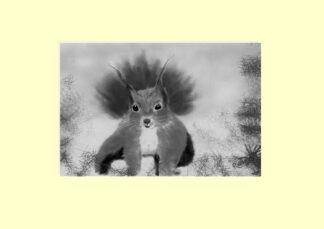 Alpine Squirrel